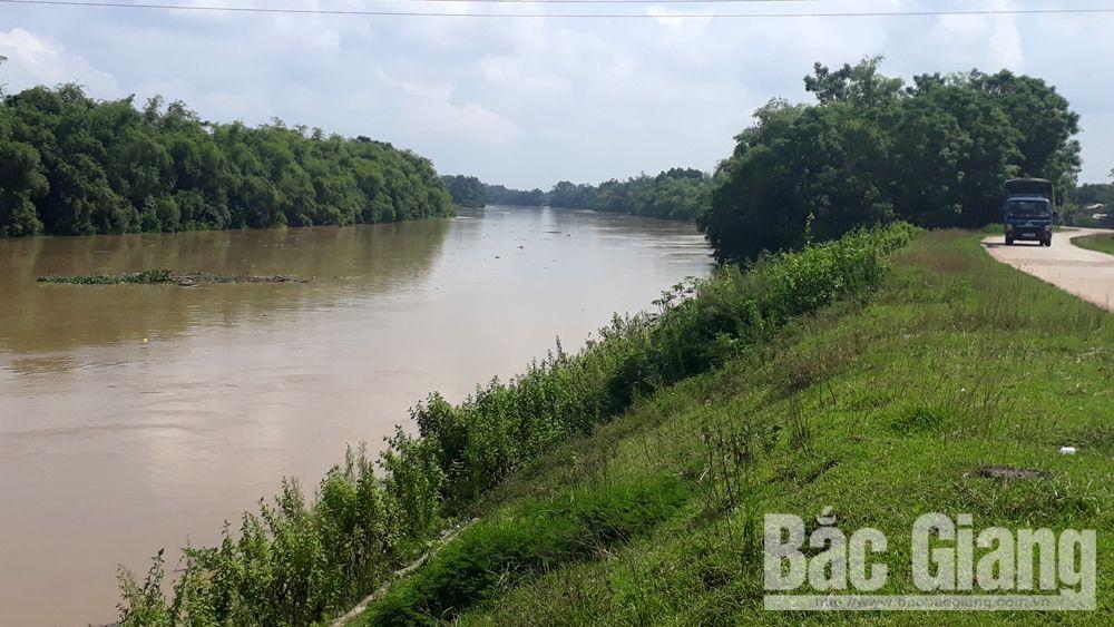 Bắc Giang: Lũ sông Thương dâng cao, hơn 100 ha lúa, hoa màu bị ngập